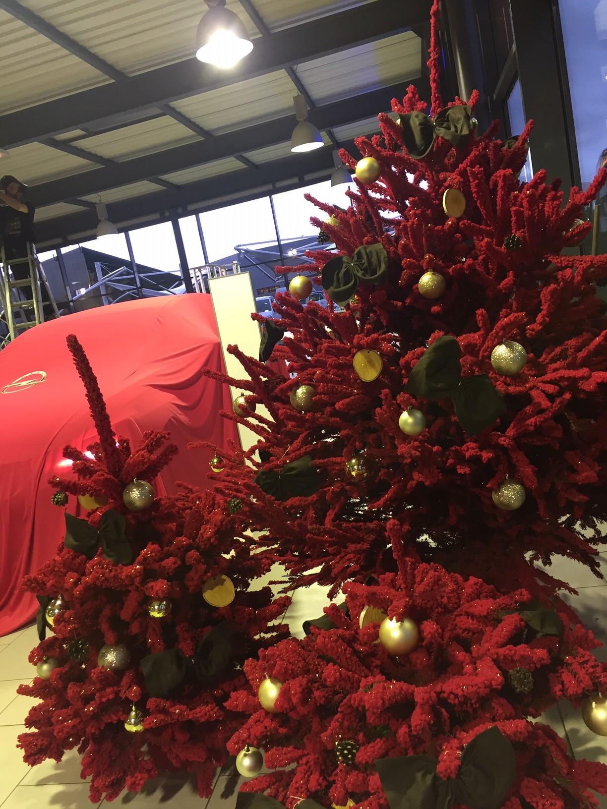 Décoration Noël - ©Instant Paysage