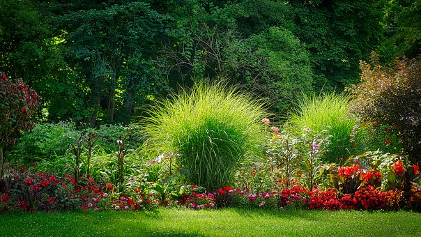 Creation jardin